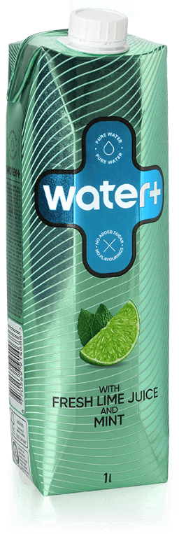 water plus lime mint